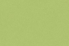 25098068-Spring-Green